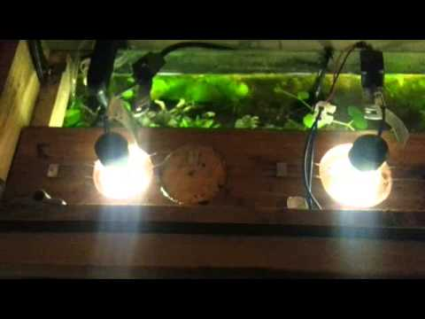 125 litre planted aquarium with gu10 led youtube. Black Bedroom Furniture Sets. Home Design Ideas