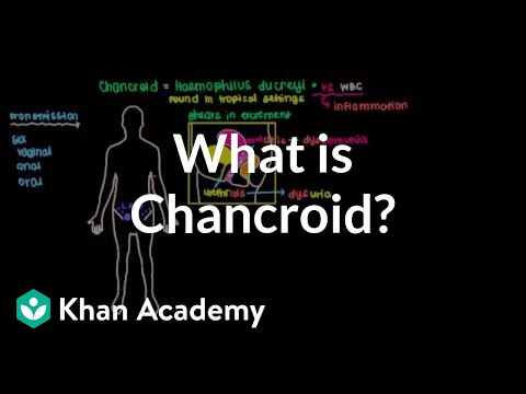What is chancroid? | Infectious diseases | NCLEX-RN | Khan Academy