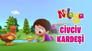 NİLOYA CİVCİV KARDEŞİ 🐥   Eğlenceli Çocuk Şarkılar & Niloya Şarkılar