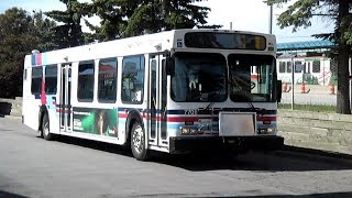 Buses in Calgary, AB (Volume One)