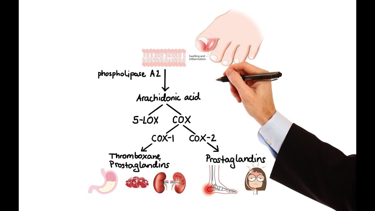 pharmacology nsaids prostaglandin analogs made easy  [ 1280 x 720 Pixel ]