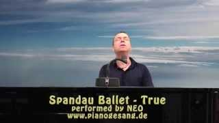 Spandau Ballet - True (cover with lyrics in HQ audio)