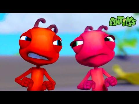 Oddbods hiện tại: Antiks | Đam mê tốc độ | Hoạt hình vui nhộn cho trẻ em