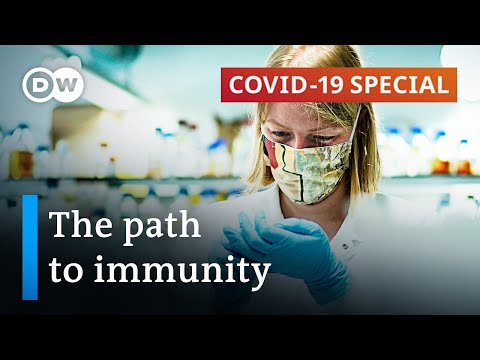 Coronavirus immunity: Did