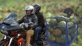 Хроники заБеларусь  Мотоциклы и арбузы сыновей Лукашенко