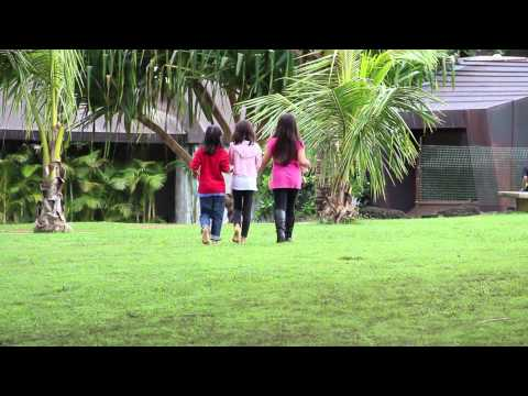 Green Spaces: Playgrounds and Education