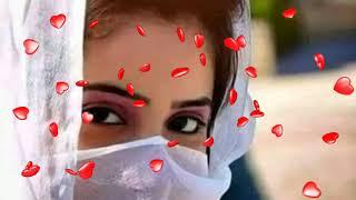Ik Mahi Tery Wasty | Zeeshan Khan Rokhti | Saraiki babo writes