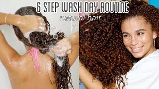 6 STEP Wash Day Routine For DRY/ BRITTLE Natural Hair | Detangling, DIY hot oil treatment + more!