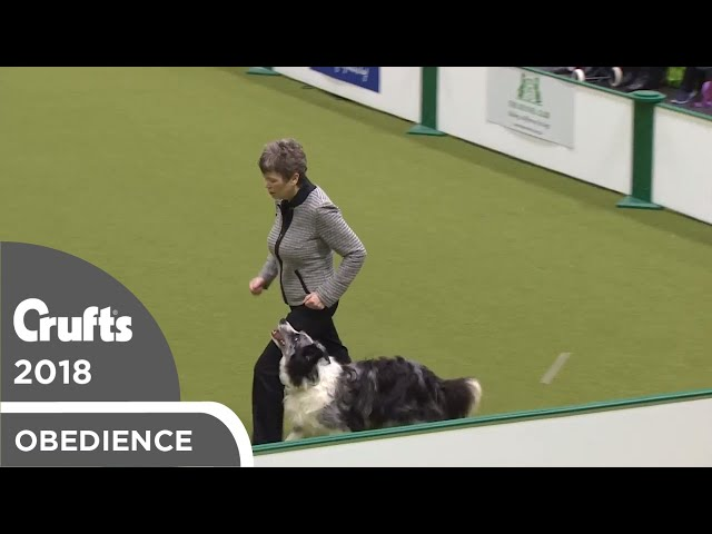 Obedience - Bitch Championship - Part 5 | Crufts 2018