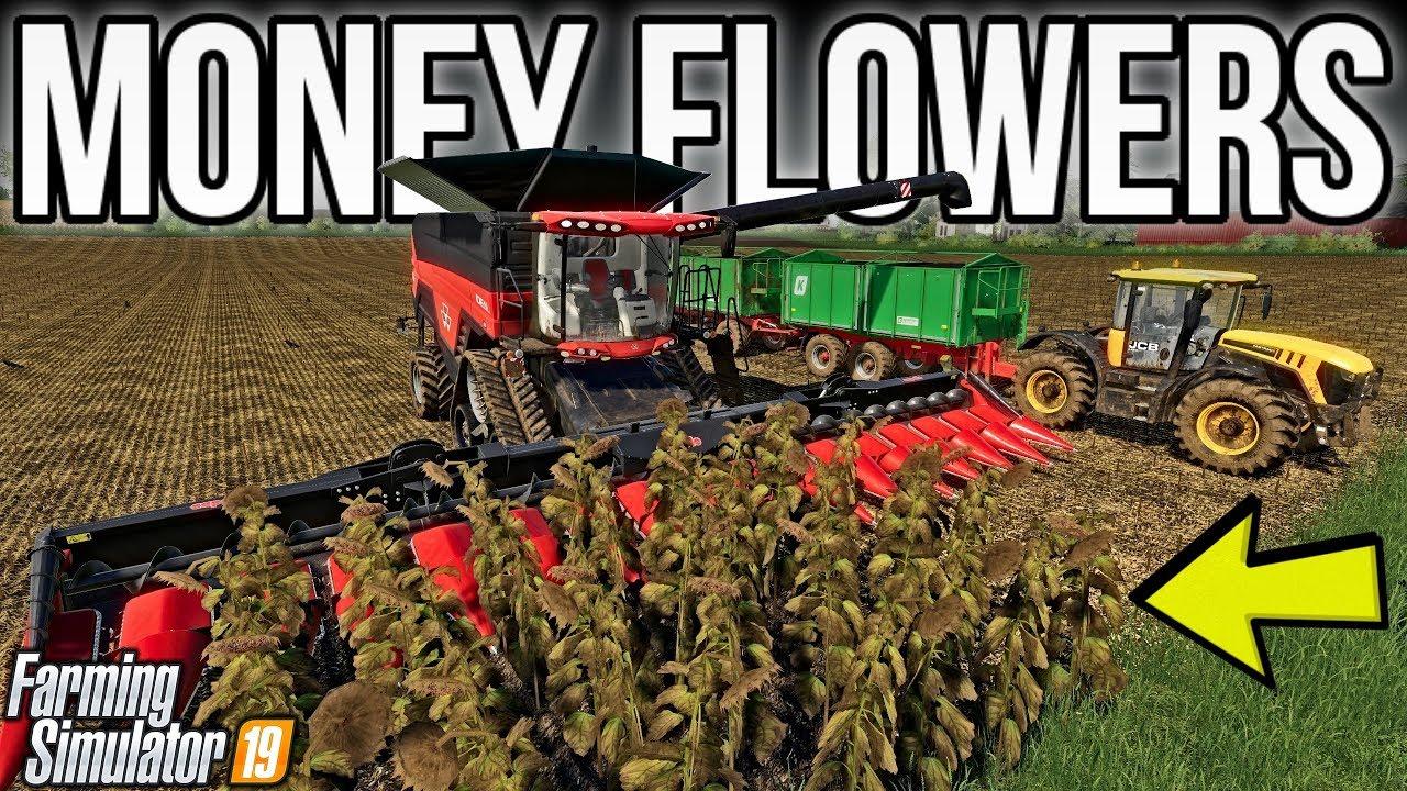 Making BANK Harvesting & Selling Sunflowers! | New Woodshire | Farming Simulator 19