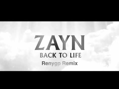 ZAYN - Back To Life Renygp Remix