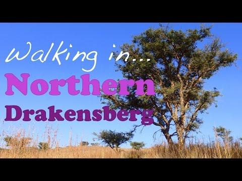 Scenic walk in rural Drakensberg, South Africa