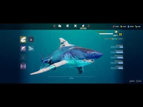 Maneater: Gulf Evolutions