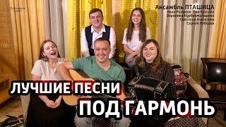 Гармонь в прямом эфире (19), ансамбль ПТАШИЦА у Вани на диване
