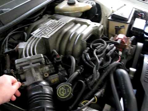 Watch likewise Topic besides 3ag in addition Ford F 100 also Oil Sending Unit Location 95 Ford F 350. on 1986 chevy alternator wiring diagram