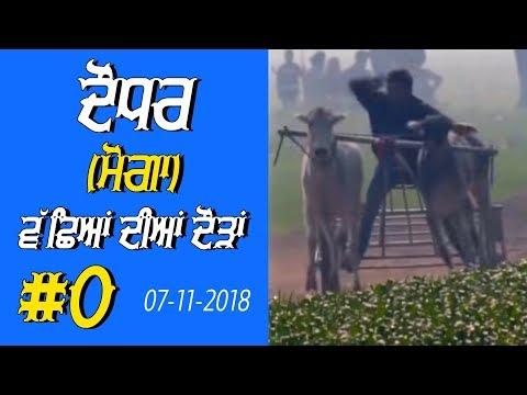 OX RACES 🔴 ਬੈਲ ਗੱਡੀਆਂ ਦੀਆਂ ਦੌੜਾਂ बैलों की दौड़ें  بیلوں کی دودن  at DAUDHAR Moga 17 01 2019