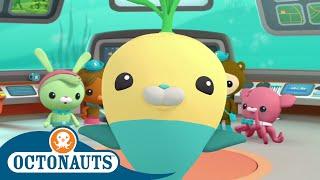 Octonauts - Until the Next Adventure | Cartoons for Kids | Underwater Sea Education