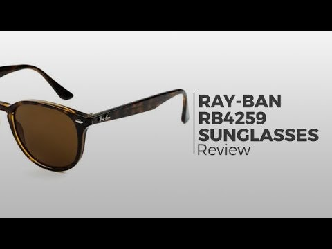 924f2c79bc9 Ray-Ban RB4259 Sunglasses
