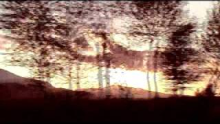 太陽族 「name」 映像作品。 2011年2月発表作品。 アルバム315...