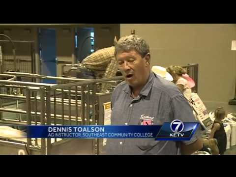 Omaha rodeo gives children hands-on learning opportunity
