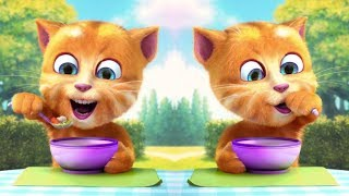 The cat Ginger. Talking Ginger, have fun and eat a lot with the kitten Ginger