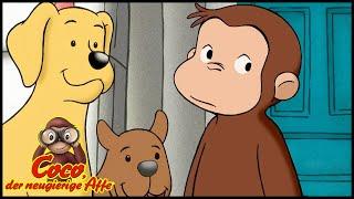 Coco der Neugierige 🐵 109 Die Hundeschau🐵 Ganze Folgen 🐵 Cartoons für Kinder🐵Staffel 1