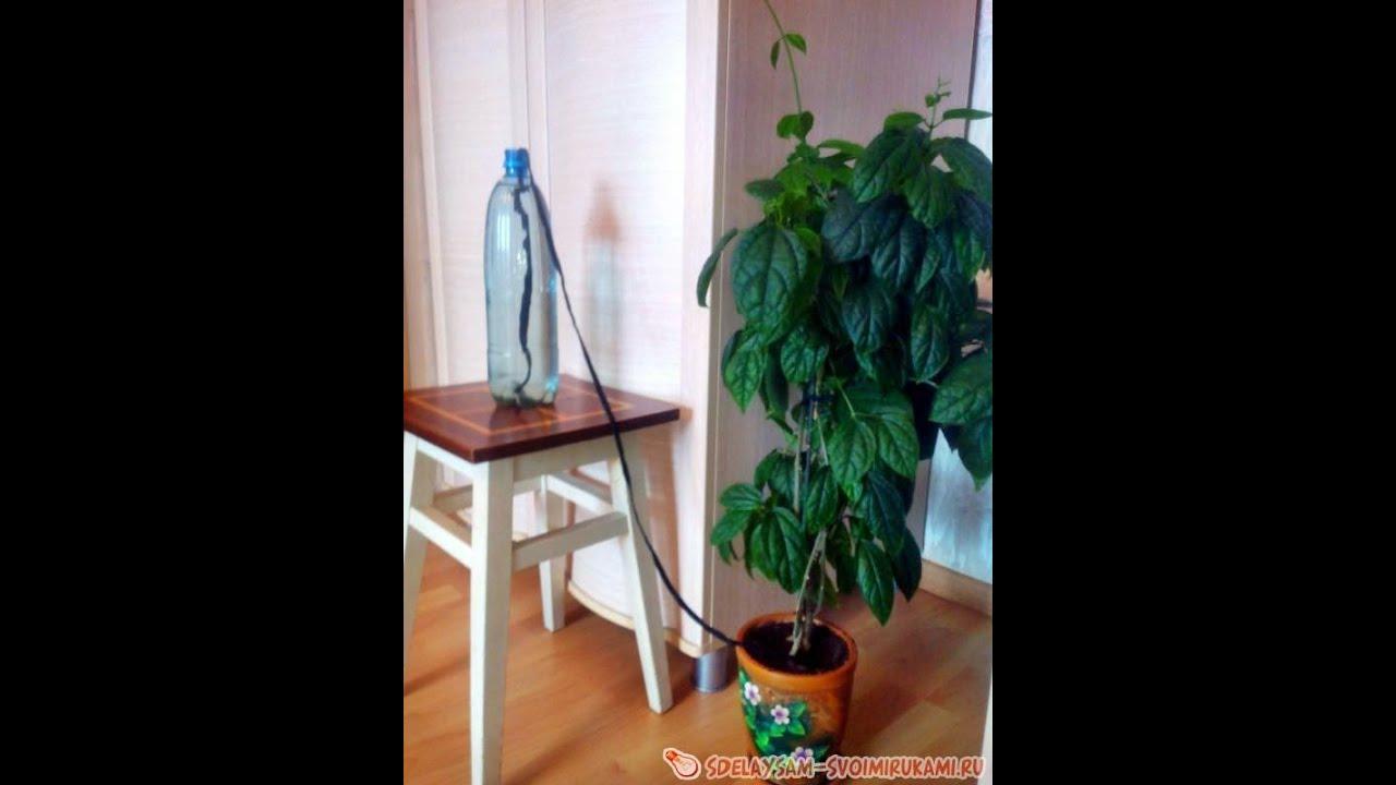 Устройство для полива цветов во время отпуска своими руками фото 253