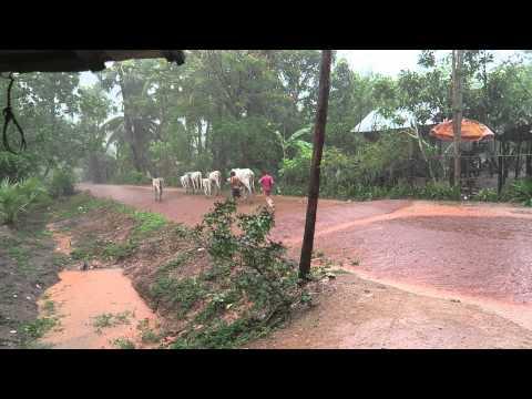 Rainy Season In Cambodia