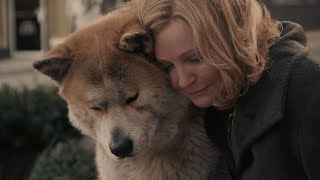 电影:《忠犬八公》。