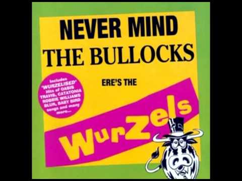 The Wurzels — You're Gorgeous