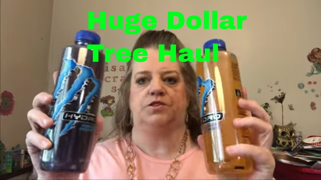 Large Dollar Tree Haul - New Items & More
