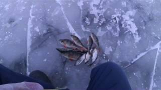 зимняя рыбалка на окуня и плотву не жданчик