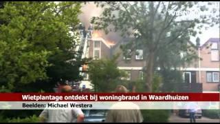 Wietplantage ontdekt bij brand in Waardhuizen - RTV Amstelveen