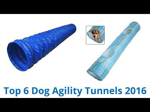 6 Best Dog Agility Tunnels 2016
