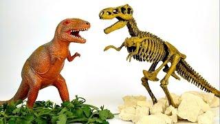 Динозавр T-REX - Играем в археологов. Развивающие видео для деток