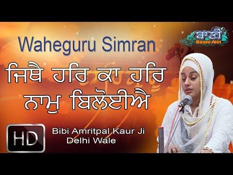 Shukrana-Samagam-Bibi-Amritpal-Kaur-Ji-Delhi-Wale-At-Janakpuri-On-24june2017-8447771130