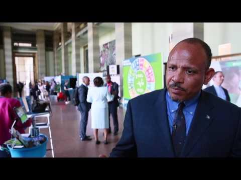 The Bahamas at the 70th World Health Assembly