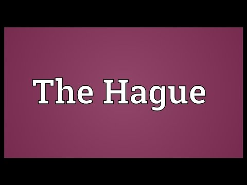 The Hague Meaning