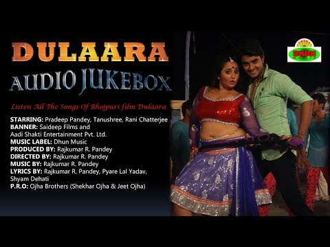 Dulara Bhojpuri Movie Full Songs Non Stop | Audio Jukebox | Pradeep Pandey
