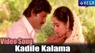 Pedarayudu Movie | Kadile Kalama Video Song