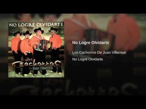 No Logre Olvidarte · Los Cachorros De Juan Villarreal