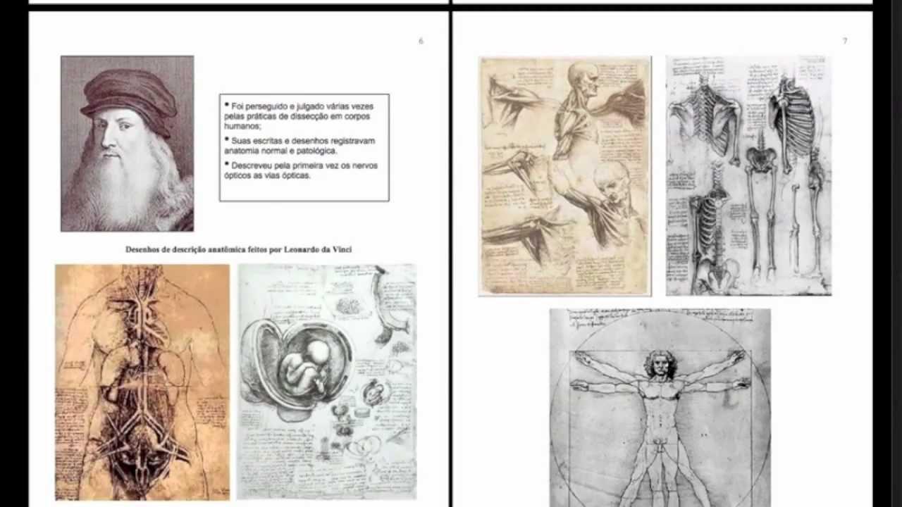 Manual Básico de Anatomia Humana - 2ª Edição - Prof. Otávio Plazzi ...
