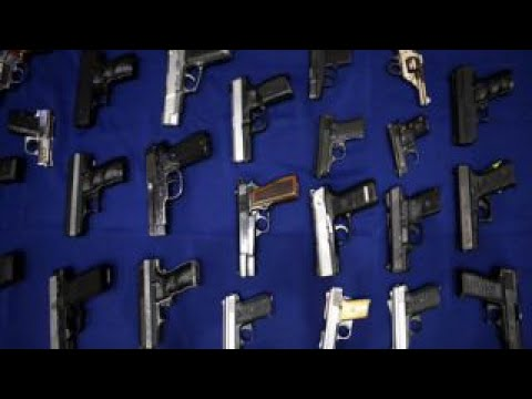 Thumbnail: Would stronger gun laws have stopped the Alexandria shooting?