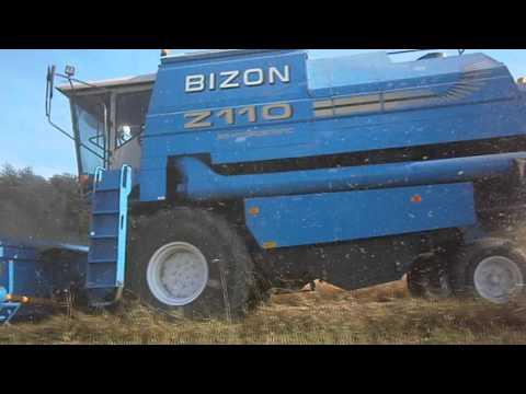 Żniwa  2012  Bizon BS-Z110 - YouTube