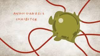 Terapia Dirigida y Cáncer de Riñón | Inhibidores de Angiogénesis y Quinasa | NKF
