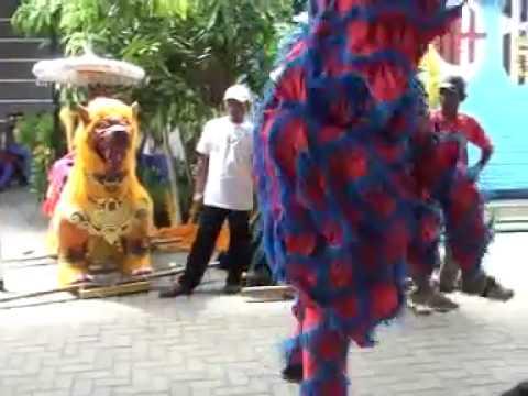 Singa Dangdut AJI PUTRA - Goyang Dua Lima