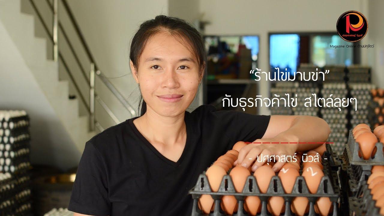 ขายไข่ อีกหนึ่งอาชีพทำเงิน - ปศุศาสตร์ นิวส์