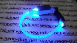 Ошейник светящийся для котов и мелких собак, синий XS 18-27 см led