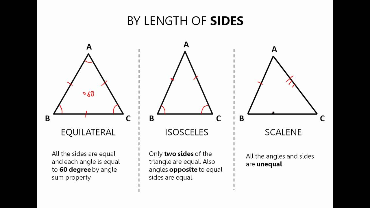 Types of Triangles  YouTube