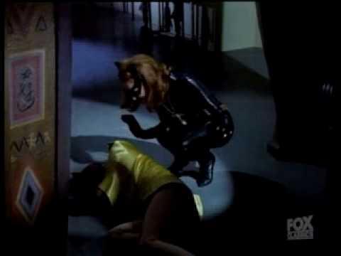 Catwoman Robin